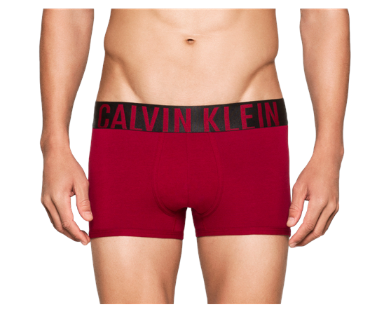 Calvin-Klein-Intense-Trunk-